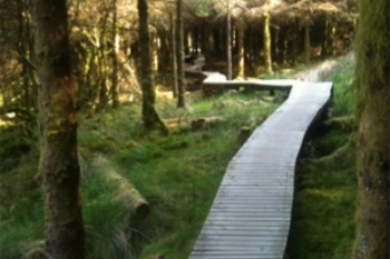 Ballyhoura Mountain Bike Trail Network