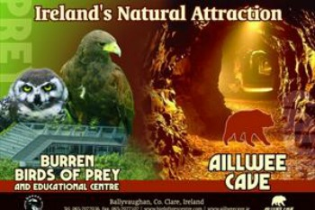 Aillwee Cave & The Birds Of Prey Centre