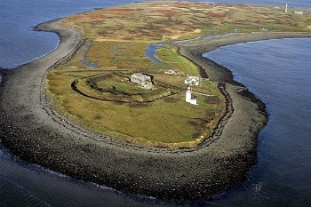 Scattery Island Tours Kilrush